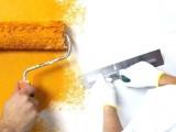 Boyacı ibo - Boya işleriniz itina ile yapılır